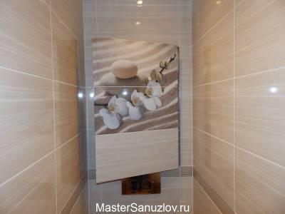 Сантехнический люк с нажимным механизмом в туалете